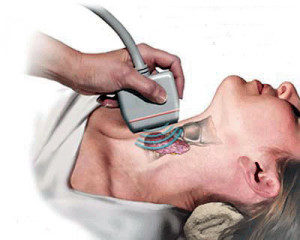 Что такое гипоэхогенные образования щитовидной железы